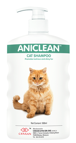medicated pet shampoo